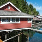 Day trip to Telegraph Cove