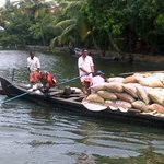 Boats transporting rice along the river.