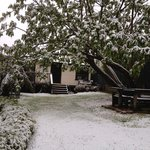 Snow in Leura