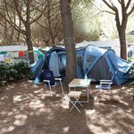 Photo de Camping Sant'Albinia