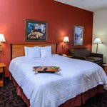 Hampton Inn Houston-Pearland Hotel Suite with King Bed and Two Sofa Beds