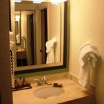 Foto de Ann Arbor Marriott Ypsilanti at Eagle Crest