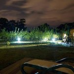Night time - Durrell Camp