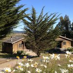 Foto Costanoa Coastal Lodge & Camp
