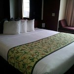 Microtel Inn & Suites by Wyndham Green Bay resmi
