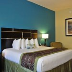 BEST WESTERN PLUS DeSoto Inn & Suites resmi
