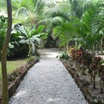 Path to the beach from hotel