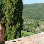 Photo of Podere Montese