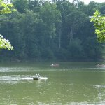Another View of Lake Needwood and Park