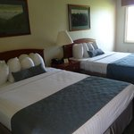 Foto van BEST WESTERN Buffalo Ridge Inn