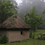 Hut in Nshongi Camp