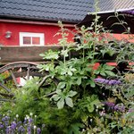 Foto di Bakkelund Bed & Breakfast