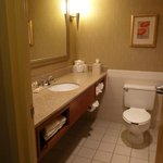 Φωτογραφία: Holiday Inn Hotel & Suites Cincinnati-Eastgate
