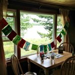 the view from the Main room of the cabin, The birdfeeder on the window was great!!!!