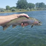Bighorn River Lodge照片