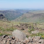 Steens Mountain View