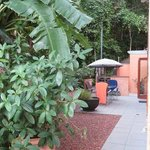 Foto de Cairns Reef 'n Rainforest B & B
