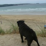 hayle beach always quiet