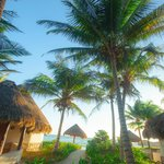 Maya Tulum Retreat & Resortの写真