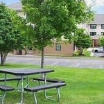 Bilde fra Extended Stay America - Minneapolis - Maple Grove