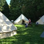 cool camping at wing hall estate