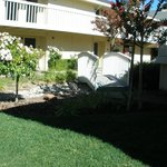 Foto de Comfort Inn Calistoga, Hot Springs of the West