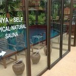 natural tropical saunas besides every pool