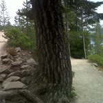 Switchbacks on the trail