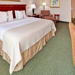 Holiday Inn Mount Vernon Foto