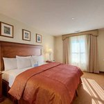 Homewood Suites Rutherford-Meadowlands Foto
