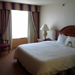 Hilton Garden Inn Milwaukee Park Place照片