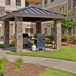 Φωτογραφία: Staybridge Suites Jackson