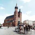 Enjoy Polen- Day Tours