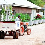 The tractor at the guesthouse