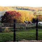 Ingalls Crossing Farm Bed & Breakfast