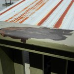 Actual view from lakehouse deck, peeling paint and rusty roof directly in front
