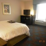 Hampton Inn & Suites Huntsville/Research Park Area Foto