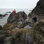rocks and tidepools at hobuck beach