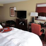 Foto di Hampton Inn & Suites Watertown