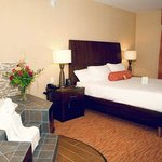 Hilton Garden Inn Watertown/Thousand Islands resmi