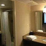 Suite Bathroom area.