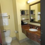 Foto de BEST WESTERN PLUS Manvel Inn & Suites