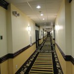 Photo de BEST WESTERN PLUS Manvel Inn & Suites