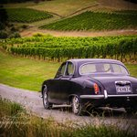 Boutique Wine Tours - Private Tours