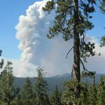 Rim fire near White Wolf Aug 26 from tioga road