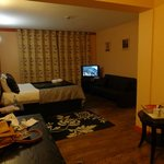 Room 19- TV, double bed, desk, leather couch