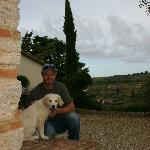 Farm dog Pedro and outdoor landscape