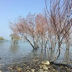 Sea of Galilee near to Kinar Classic Hotel
