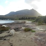 Φωτογραφία: Darven Cottage B&B Sannox, Isle of Arran