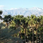 Furnace Creek Campground resmi